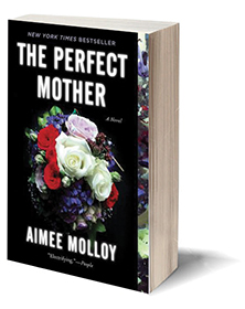 The Perfect Mother: A Novel Cover